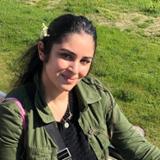 Sarezh H.
