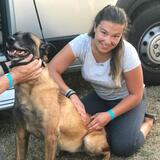 Vitale Hund-Therapie