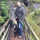 www.hundetrainer-muenchen.de